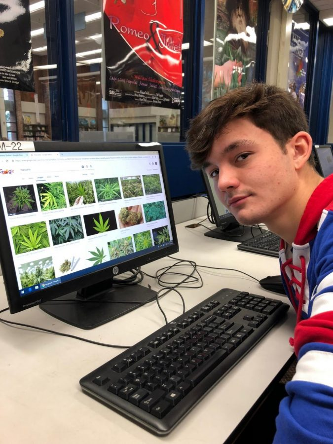 Triton Senior Jeremy Dufford researches marijuana.