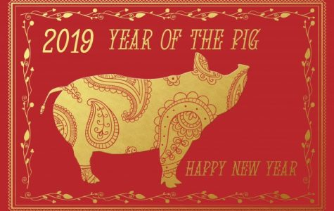 As 2019 begins, so will the Year of the Pig in early February!