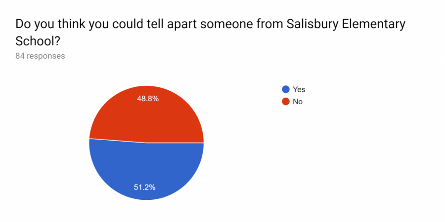 A+chart+showing+the+survey+for+Salisbury.
