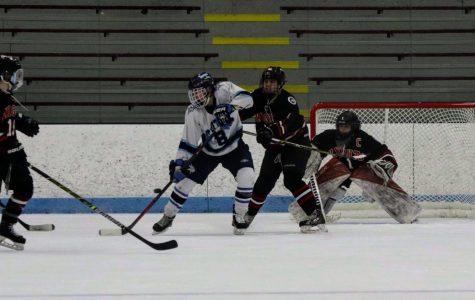 Skating Through the Season