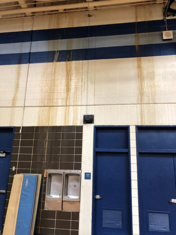 Triton's mystery slime in the middle school gymnasium