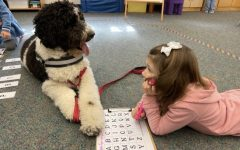 Therapy Dogs a Beacon of Hope, Love, and Comfort