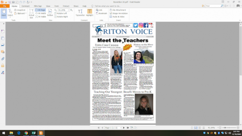 Triton Voice for November 20, 2020